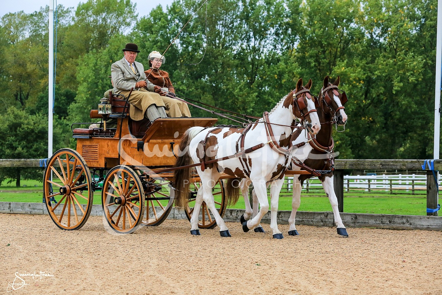 Bds Addington 2017 Galleries Carriage Driving